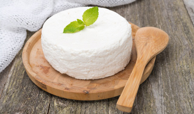 fresh homemade cottage cheese, close-up