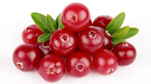 ягода брусника картинка