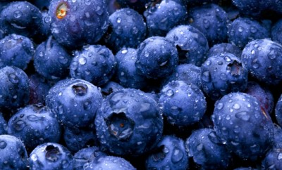 Blueberry Background Material